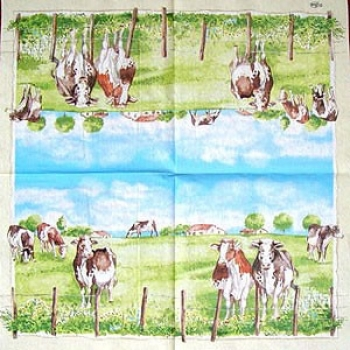 Serviette Country Side