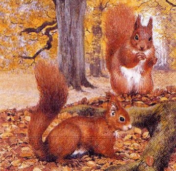 Serviette Two Squirrels